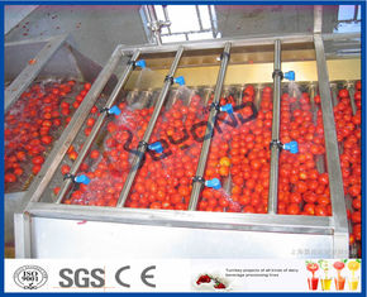 Tomaten-Produktlinie