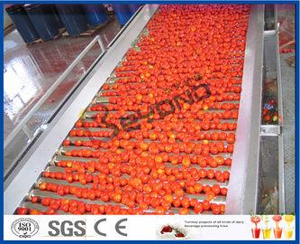 Tomaten-Kartoffellegemaschine-Tomaten-Produktlinie-voll/halb automatische 2 - 50 t/h