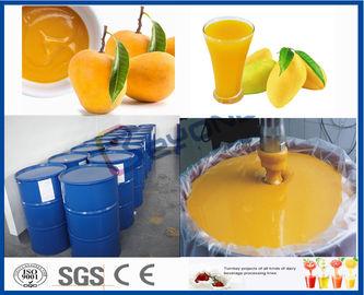 Frucht-Prozessor-Maschinen-Mango-Produktlinie für Saftverarbeitungs-Anlage